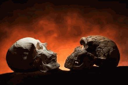 Neanderthaler Schedel gevonden in Europe