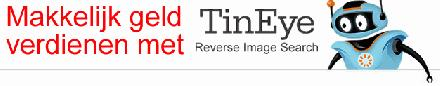tineye.com.