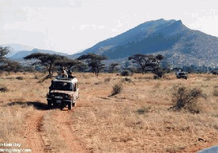 Goedkoop op Safari