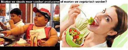 Moeten we steeds meer voedsel produceren of moeten we vegetarisch worden