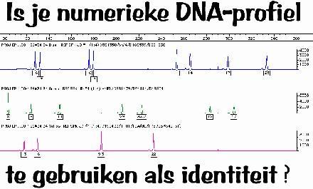 numerieke DNA-profiel