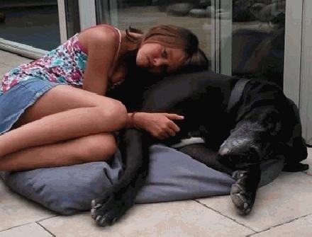 Slaaphond