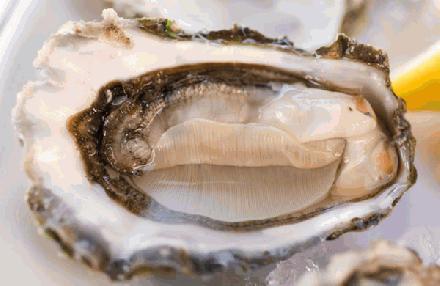 Mijn oester recept