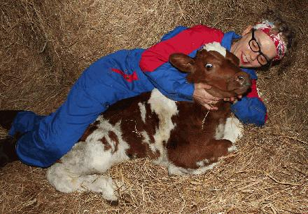 05 koe knuffelen