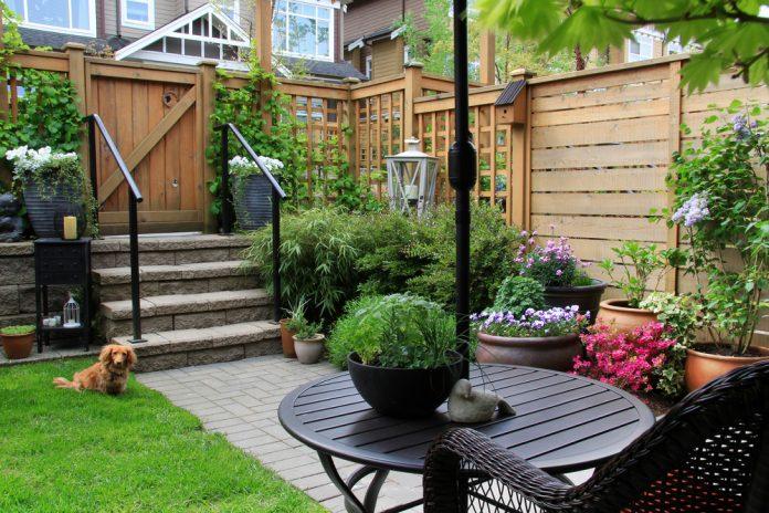 tuin met schutting